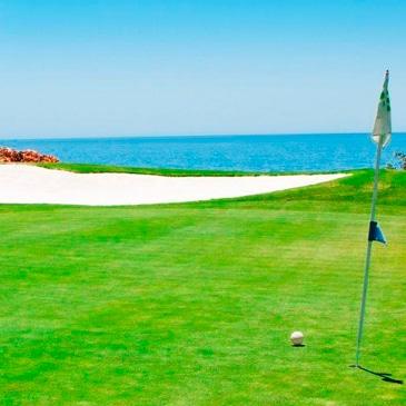 golf-1-1024×512